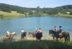 equitation service 47
