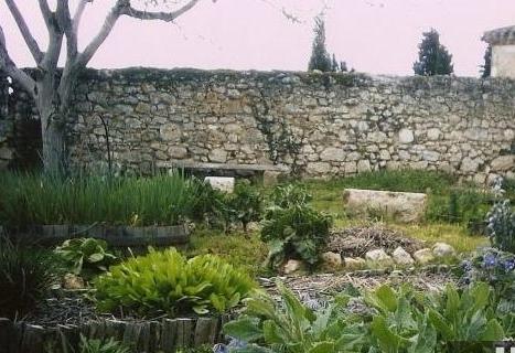 Jardin m di val le buis qui court for Jardin medieval