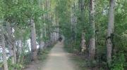 Parc Naturel de Passeligne 6