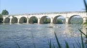 Dame Garonne